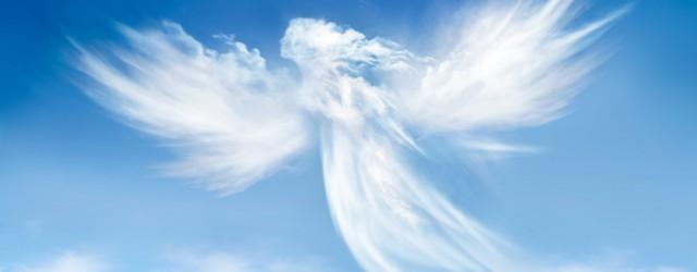 Aujourd'hui, 11 janvier 2019… Cela fait 3 ans que je haïs les 11 janvier… 3 ans que tu as rejoint les anges, dans un Paradis que j'espère bien blanc pour...