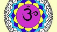 7ème Chakra: Sahasrara (cercle aux 972 pétales) «Je Sais»  Le Chakra Coronal implique une rotation positive chez l'homme, négative chez la femme. Ce Chakra est relié au corps divin...